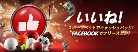 facebookプロモ