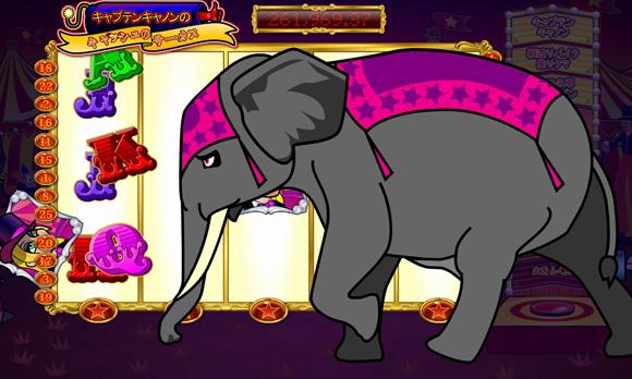 象、大暴れ