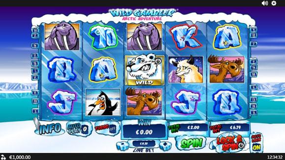 Wild Gambler2